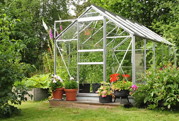 Greenhouse Staging North Wales