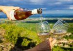Sulphite Free Wine